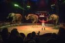 Elefanterne i forestillingen (til tryk)