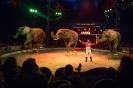 Elefanterne i forestillingen (til web)